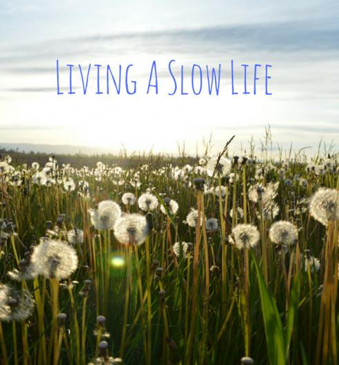 slow_life